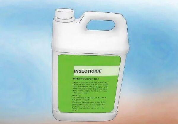 ▷ Insecticidas contra pulgones ▷【 EliminarBichos.es 🥇】.jpg