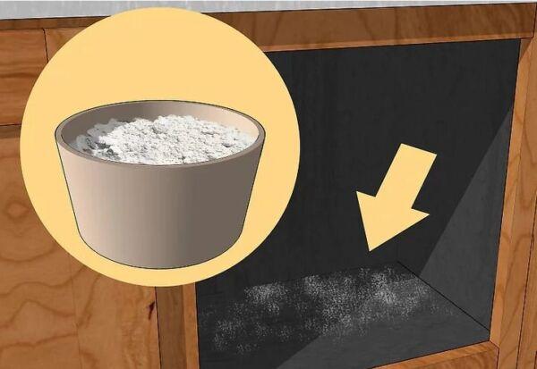 ▷ Tierra de diatomedas para los pececillos de plata ▷【 EliminarBichos.es 🥇】