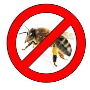▷ Cómo eliminar las abejas ▷【 EliminarBichos.es 🥇】