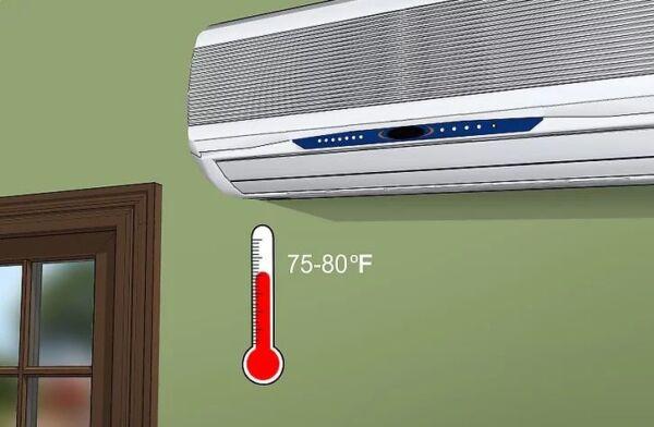 ▷ Bajar la temperatura para eliminar acaros ▷【 EliminarBichos.es 🥇】