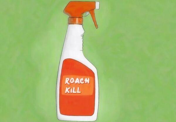 ▷ Insecticida como repelentes de cucarachas▷【 EliminarBichos.es 🥇】