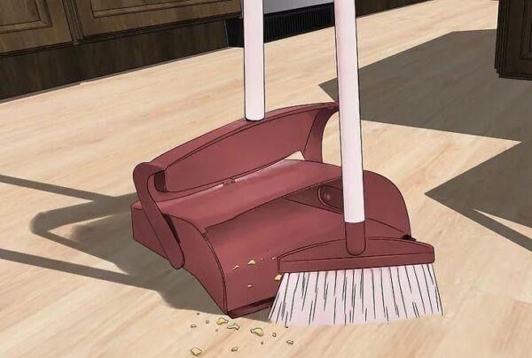▷ Limpiar la casa como repelente de hormigas▷【 EliminarBichos.es 🥇】