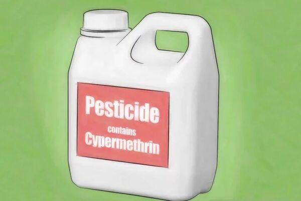 ▷ Pesticida como repelentes de cucarachas▷【 EliminarBichos.es 🥇】