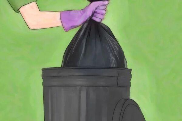 ▷ Recoger la basura como repelentes de cucarachas▷【 EliminarBichos.es 🥇】
