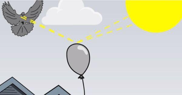 ▷ Reflejos como repelentes de palomas ▷【 EliminarBichos.es 🥇】.jpg