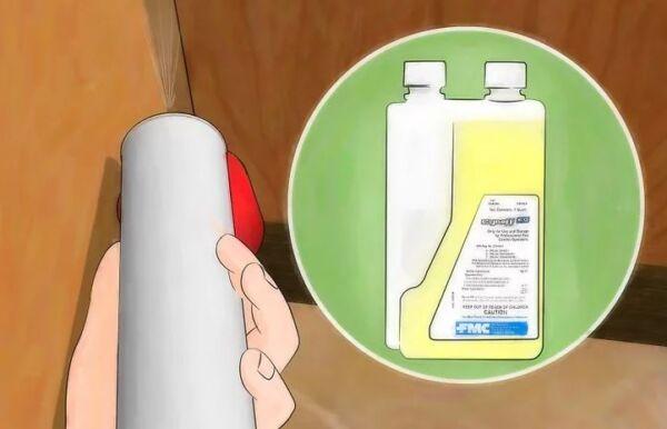 ▷ Veneno líquido como repelentes de cucarachas▷【 EliminarBichos.es 🥇】