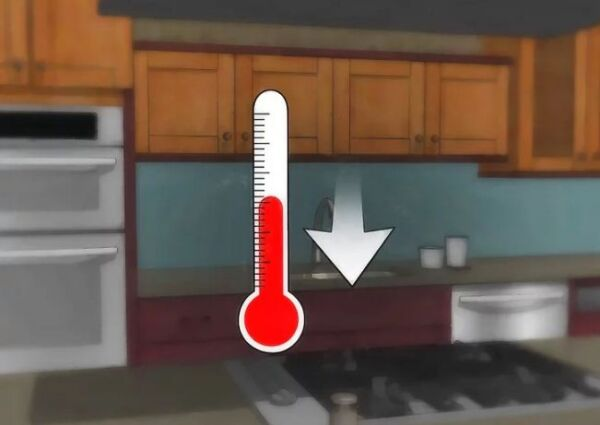 ▷ temperatura y humedad para las polillas ▷【 EliminarBichos.es 🥇】.jpg