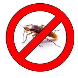 Ahuyentar-Cucarachas