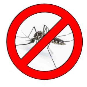 Como-ahuyentar-mosquitos.jpg